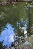 Reflexionen Stockfoto