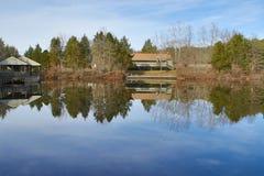 Reflexionen auf altem Teich Stockbilder