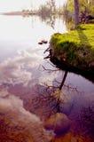 Reflexionen auf dem See im Frühjahr. Lizenzfreies Stockfoto