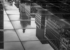 Reflexionen auf dem Weg Stockfotos