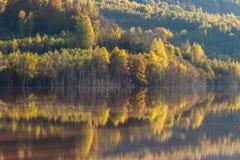 Reflexionen auf einem See Lizenzfreies Stockfoto