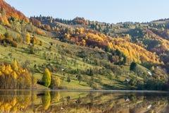 Reflexionen auf einem See mit herbstlichem Wald stockbilder