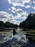 Reflexionen auf einem Teich Stockbild