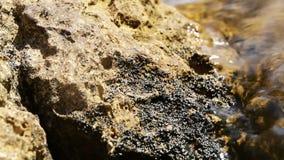 Reflexionen auf nassem Stein Stockbild