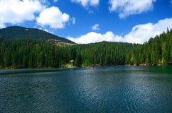 Reflexionen av den bl?a himlen, bergen och pinjeskogen i den alpina sj?n Synevyr i ukrainska Carpathians arkivfoto