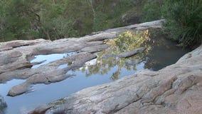 Reflexionen av himmel och eukalyptuns, i att sippra vatten på Simpson, faller arkivfilmer