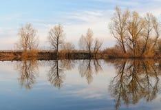 Reflexionen av himmel och träd från den motsatta banken i floden Arkivbild