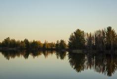 Reflexionen av träd upp nord ser som den organiska gitarren Arkivfoton