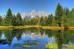 Reflexionen der Natur Stockfotografie