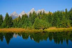 Reflexionen der Natur Lizenzfreie Stockbilder