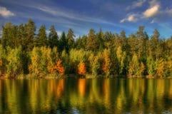 Reflexionen des Herbstes Stockbilder