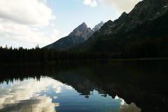 Reflexionen des Tetons stockbild