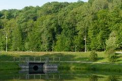 Reflexionen des Waldes auf dem See Lizenzfreie Stockbilder