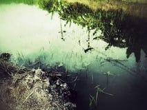 Reflexionen in einem kleinen Abzugsgraben Stockfotografie