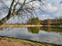 Reflexionen in einem See Lizenzfreies Stockfoto