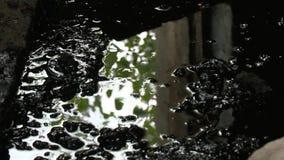 Reflexionen för trädfilialen på kemisk flytande för olja återstår i övergiven fabrik lager videofilmer