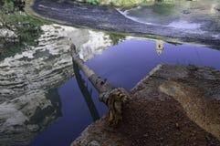 Reflexionen im Wasser Lizenzfreies Stockfoto