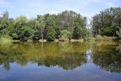 Reflexionen im Wasser Stockbilder