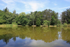 Reflexionen im Wasser Stockbild