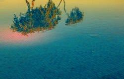 Reflexionen von orange Blumen in einem blauen Wasserbecken Lizenzfreies Stockbild