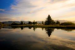 Reflexioner av en Oregon flod Arkivbild