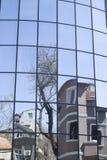Reflexioner av hus och träd i en ny glass byggnad Royaltyfri Fotografi