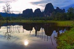 Reflexioner av Laos. Gammalt träd. Royaltyfri Foto