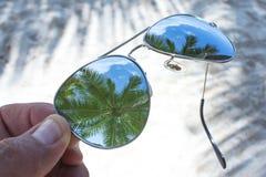 Reflexioner av sommar Fotografering för Bildbyråer