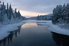 Reflexioner av vintern royaltyfri fotografi