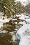 Reflexioner för Catskills vinterström arkivfoto
