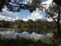 Reflexioner från sjön Royaltyfri Foto