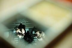 Reflexioner i en maträtt Royaltyfria Foton