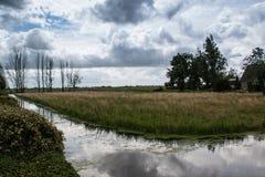 Reflexioner i Nederländerna jordbruksmark arkivbilder