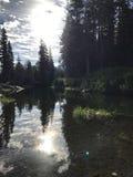 Reflexioner i vatten Arkivbilder