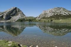 Reflexioner på Enol sjön Arkivbilder
