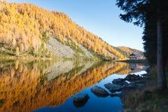 Reflexioner på vatten, höstpanorama från bergsjön royaltyfri foto