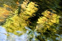 Reflexiones Imagen de archivo