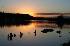 Reflexiones 3 del río Foto de archivo libre de regalías