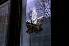 Reflexiones Fotografía de archivo libre de regalías