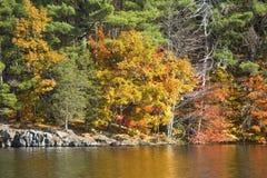 Reflexiones coloridas del follaje de otoño en el depósito del oeste de Hartford Imagenes de archivo