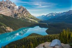 Reflexiones de la mañana en el lago Peyto Fotos de archivo libres de regalías