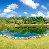 Reflexiones de la naturaleza en un día soleado Foto de archivo libre de regalías