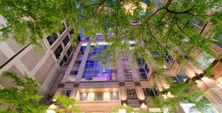 Reflexiones de la noche en rascacielos de la ciudad con los árboles en la noche Foto de archivo libre de regalías