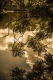 Reflexiones de la nube Imagen de archivo libre de regalías