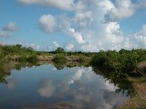 Reflexiones de la nube Imágenes de archivo libres de regalías