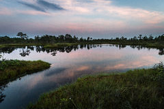 Reflexiones de la nube en el lago del pantano Foto de archivo libre de regalías
