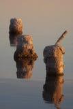 Reflexiones de los pilares del embarcadero Imagen de archivo libre de regalías