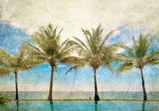 Reflexiones de palmas en la piscina Fotos de archivo libres de regalías