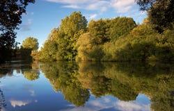 Reflexiones del árbol Imagen de archivo