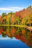 Reflexiones del árbol del follaje del otoño en la charca Fotos de archivo libres de regalías